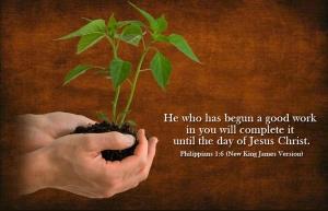 philippians_1.6_nkjv_picture
